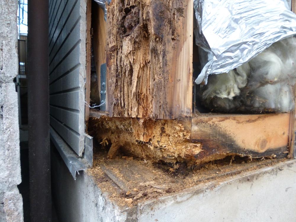 大田区O様邸 屋根外壁塗装リフォーム工事のサムネイル画像8